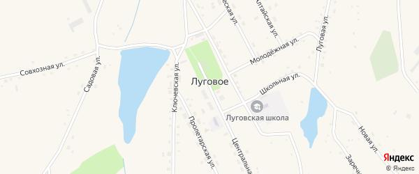 Совхозная улица на карте Лугового села с номерами домов