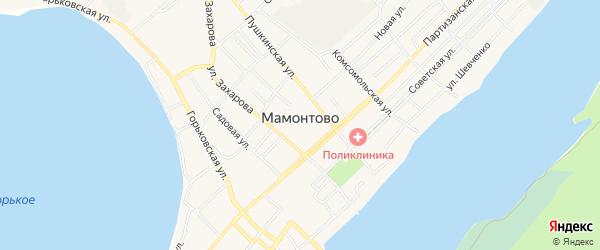 Карта села Мамонтово в Алтайском крае с улицами и номерами домов