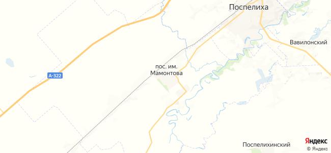 Мамонтова на карте