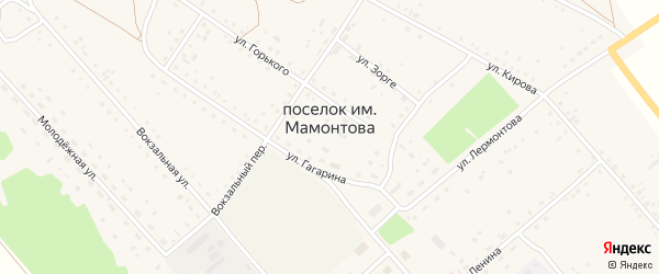 Тракторный переулок на карте поселка им Мамонтова с номерами домов