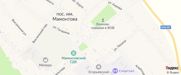 Улица Лермонтова на карте поселка им Мамонтова с номерами домов