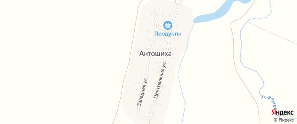Западная улица на карте села Антошихи с номерами домов