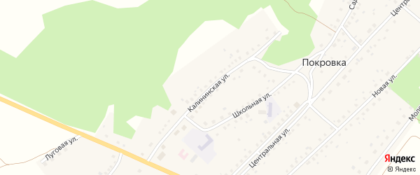 Калининская улица на карте села Покровки с номерами домов