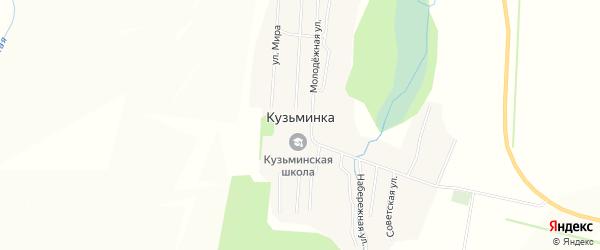 Карта села Кузьминки в Алтайском крае с улицами и номерами домов