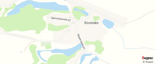 Береговая улица на карте деревни Козлово Новосибирской области с номерами домов