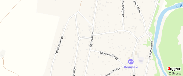 Луговая улица на карте Староалейского села с номерами домов