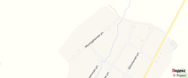 Молодежная улица на карте Целинного села Новосибирской области с номерами домов