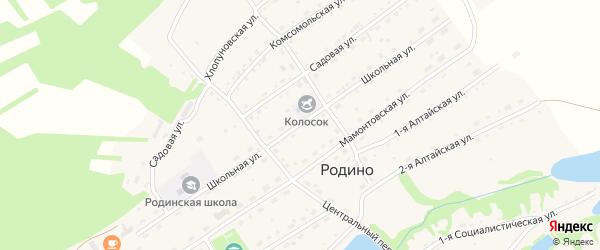 Школьная улица на карте села Родино с номерами домов