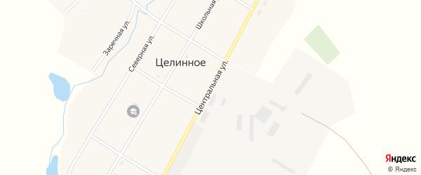 Центральная улица на карте Целинного села Новосибирской области с номерами домов