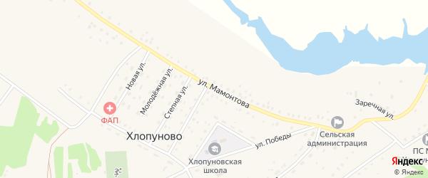 Улица Мамонтова на карте села Хлопуново с номерами домов