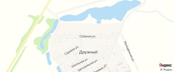 Школьная улица на карте Дружного поселка Новосибирской области с номерами домов