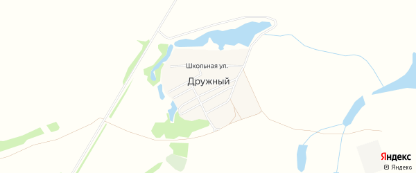 Карта Дружного поселка в Новосибирской области с улицами и номерами домов