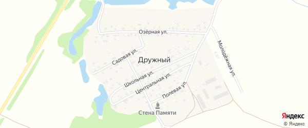 Молодежная улица на карте Дружного поселка Новосибирской области с номерами домов