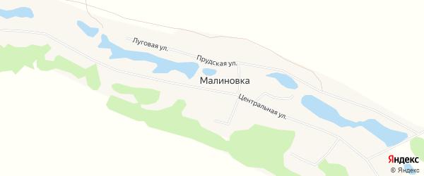 Карта села Малиновки в Алтайском крае с улицами и номерами домов