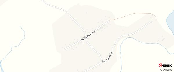 Улица Урицкого на карте села Шипуново(Российского с/с) Алтайского края с номерами домов