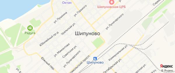 Карта села Шипуново(Российского с/с) в Алтайском крае с улицами и номерами домов