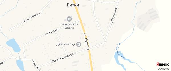 Улица Ленина на карте села Битков Новосибирской области с номерами домов