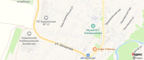 Молодежная улица на карте села Курьи Алтайского края с номерами домов