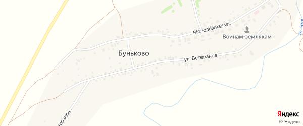 Улица Ветеранов на карте деревни Буньково Новосибирской области с номерами домов