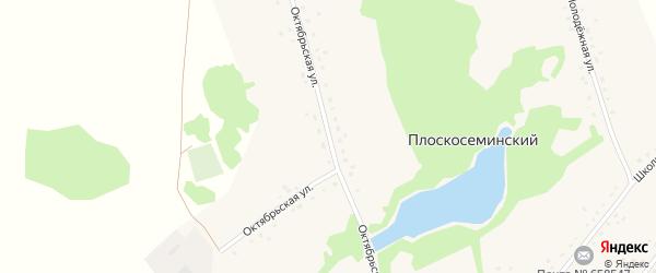 Октябрьская улица на карте Плоскосеминского поселка Алтайского края с номерами домов