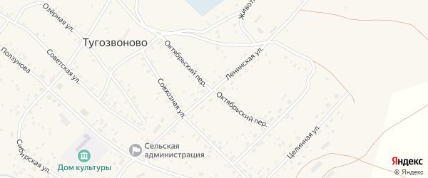 Октябрьский переулок на карте села Тугозвоново Алтайского края с номерами домов