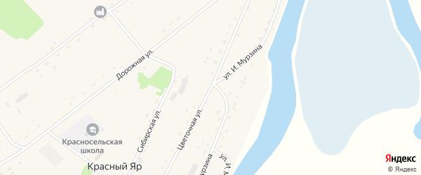 Цветочная улица на карте села Красного Яра Алтайского края с номерами домов