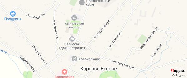 Молодёжная улица на карте Карпова Второго села Алтайского края с номерами домов