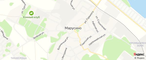 Территория днп Марусино на карте Новосибирского района Новосибирской области с номерами домов