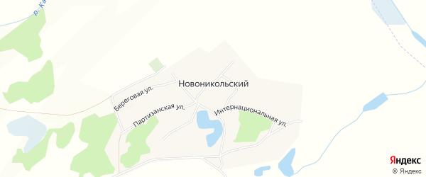 Карта Новоникольского поселка в Алтайском крае с улицами и номерами домов