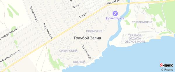 Карта поселка Голубого Залива в Новосибирской области с улицами и номерами домов