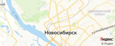 Сасса Елена Александровна, адрес работы: г Новосибирск, ул Писарева, д 4