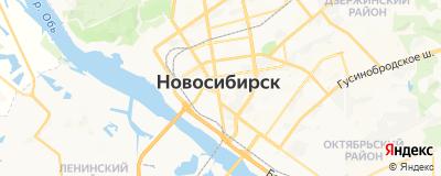 Медведев Сергей Владимирович, адрес работы: г Новосибирск, ул Трудовая, д 9
