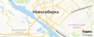 Бандман Елена Георгиевна, адрес работы: г Новосибирск, ул Коммунистическая, д 48А