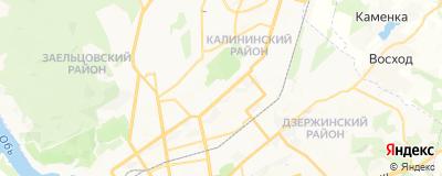 Печникова Ирина Константиновна, адрес работы: г Новосибирск, ул Александра Невского, д 9