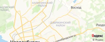 Федорова Наталья Владимировна, адрес работы: г Новосибирск, ул Ползунова, д 21