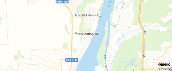 Карта Мичуринского сельсовета Новосибирской области с районами, улицами и номерами домов