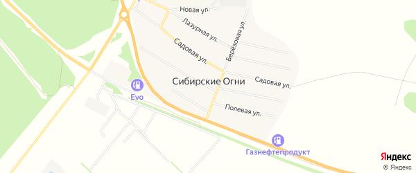 Карта поселка Сибирские Огни в Алтайском крае с улицами и номерами домов
