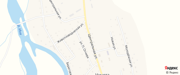 Центральная улица на карте села Чинеты с номерами домов