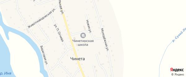 Новая улица на карте села Чинеты с номерами домов