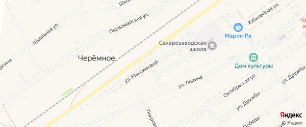 Улица А.Максимовой на карте Черемного села Алтайского края с номерами домов