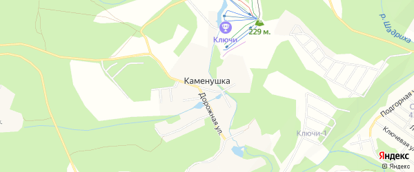 Карта поселка Каменушки в Новосибирской области с улицами и номерами домов