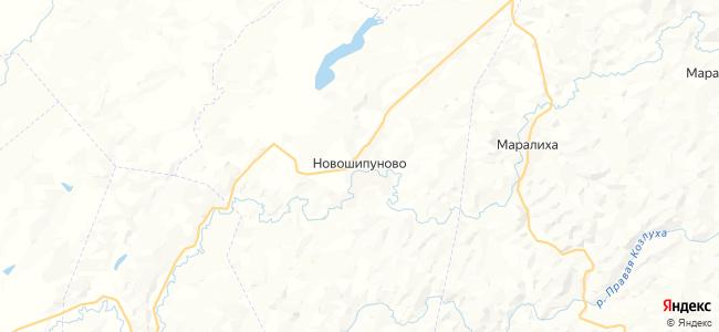 Новошипуново на карте