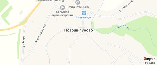 Клубный переулок на карте села Новошипуново с номерами домов