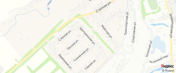 Центральная улица на карте Чернореченского поселка Новосибирской области с номерами домов
