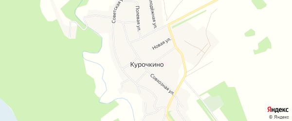 Карта села Курочкино в Алтайском крае с улицами и номерами домов