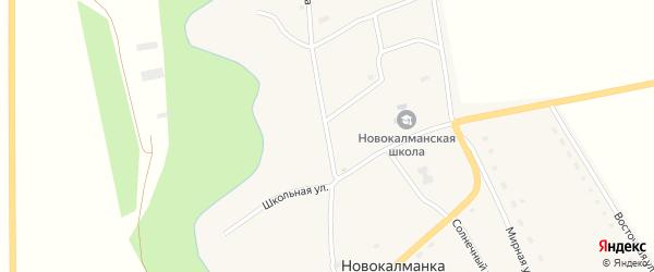 Улица Назарова на карте села Новокалманки с номерами домов