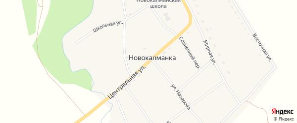 Центральная улица на карте села Новокалманки с номерами домов