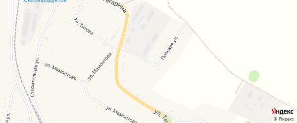 Полевая улица на карте села Новороманово Алтайского края с номерами домов