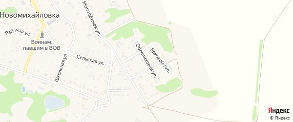 Облепиховая улица на карте поселка Новомихайловки с номерами домов