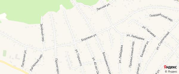 Боровая улица на карте поселка Тальменки Алтайского края с номерами домов
